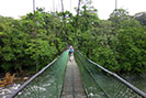 Hanging Bridge at Selva Verde
